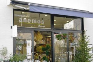 観光リポート~Flower&plants anenos yuuna/旅のお土産に喜ばれる!心まで癒されるお花のギフト~