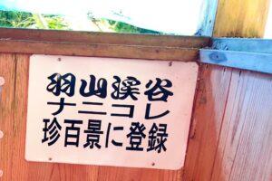 観光リポート~「羽山渓(はやまけい)」一見の価値あり!巨岩をくりぬいた大迫力の〇〇〇~